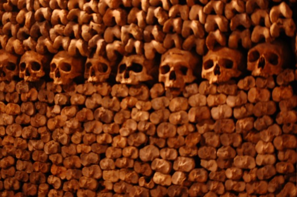 catacombs skeletons