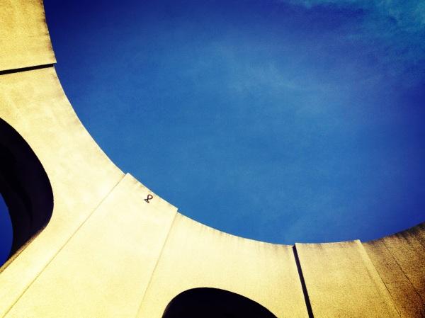 photo 5 (3)