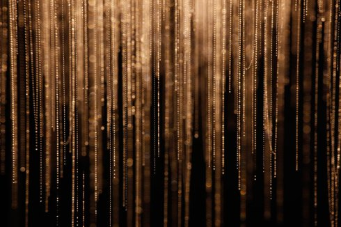 Waitomo-Glowworm-Caves-New-Zealand-Glowworm-strings-Closeup